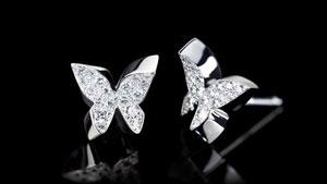 Canturi Odyssey butterfly stud earrings with diamonds in 18kt white gold